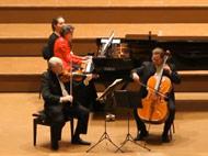 Vienna Brahms Trio